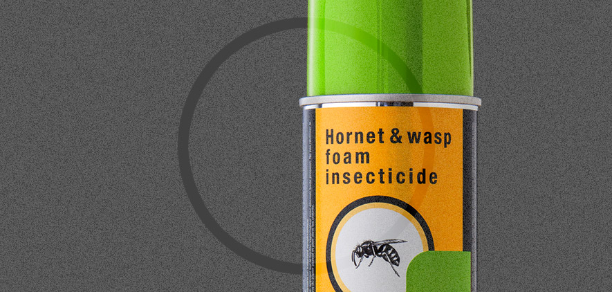 Hornet and Wasps Foam Insecticide